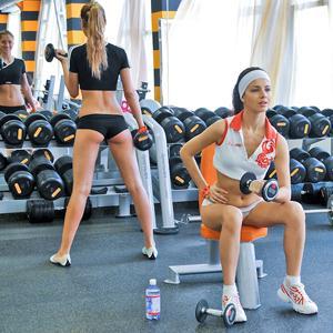 Фитнес-клубы Ермиша